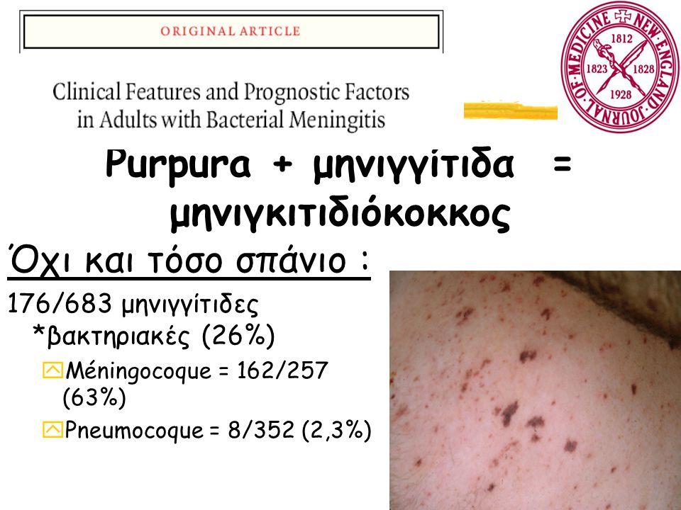 Purpura + μηνιγγίτιδα = μηνιγκιτιδιόκοκκος