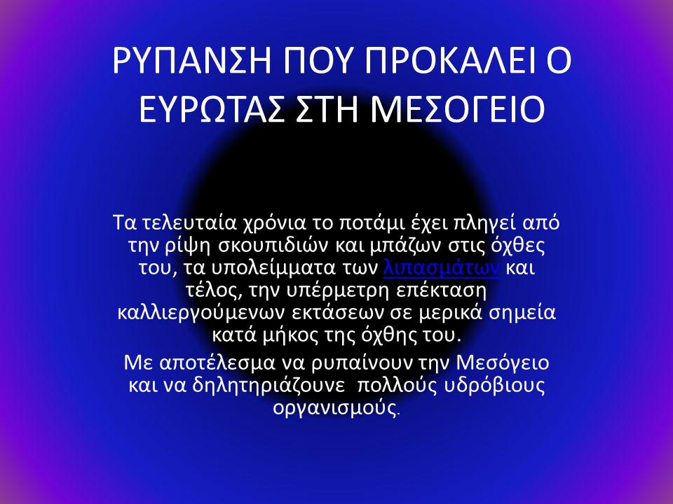 ΡΥΠΑΝΣΗ ΠΟΥ ΠΡΟΚΑΛΕΙ Ο ΕΥΡΩΤΑΣ ΣΤΗ ΜΕΣΟΓΕΙΟ