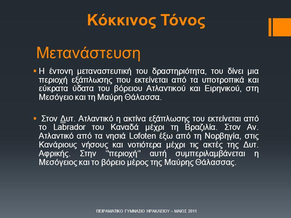 ΠΕΙΡΑΜΑΤΙΚΟ ΓΥΜΝΑΣΙΟ ΗΡΑΚΛΕΙΟΥ – ΜΑΙΟΣ 2011