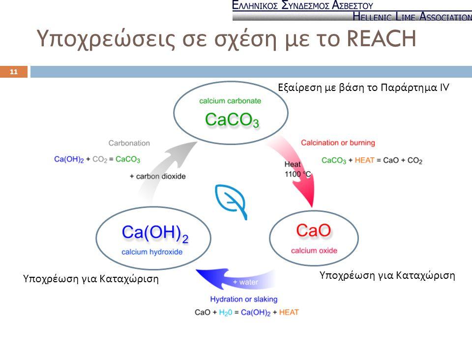 Υποχρεώσεις σε σχέση με το REACH