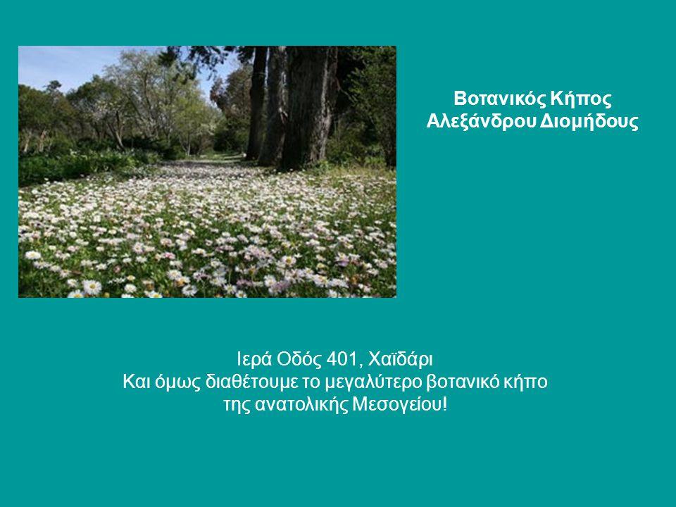 Βοτανικός Κήπος Αλεξάνδρου Διομήδους