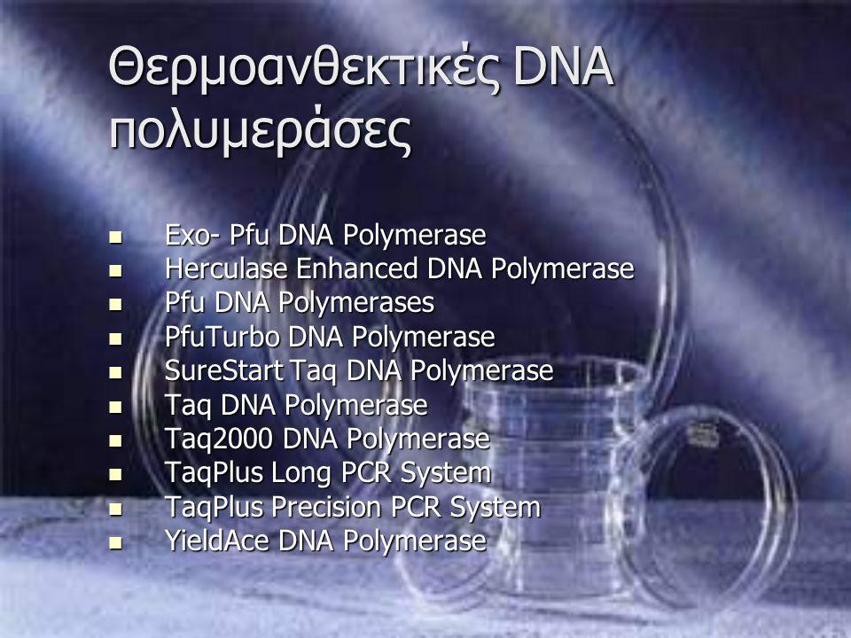 Θερμοανθεκτικές DNA πολυμεράσες