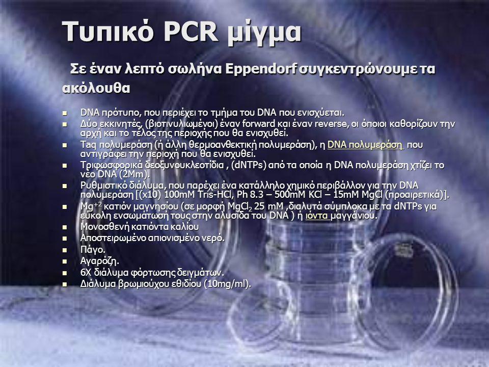 Τυπικό PCR μίγμα Σε έναν λεπτό σωλήνα Eppendorf συγκεντρώνουμε τα ακόλουθα