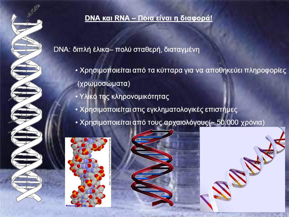 DNA και RNA – Ποια είναι η διαφορά!