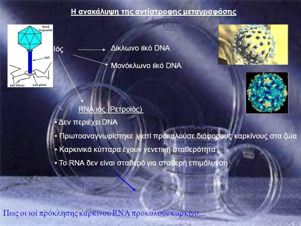 Πως οι ιοί πρόκλησης καρκίνου RNA προκαλούν καρκίνο;;;