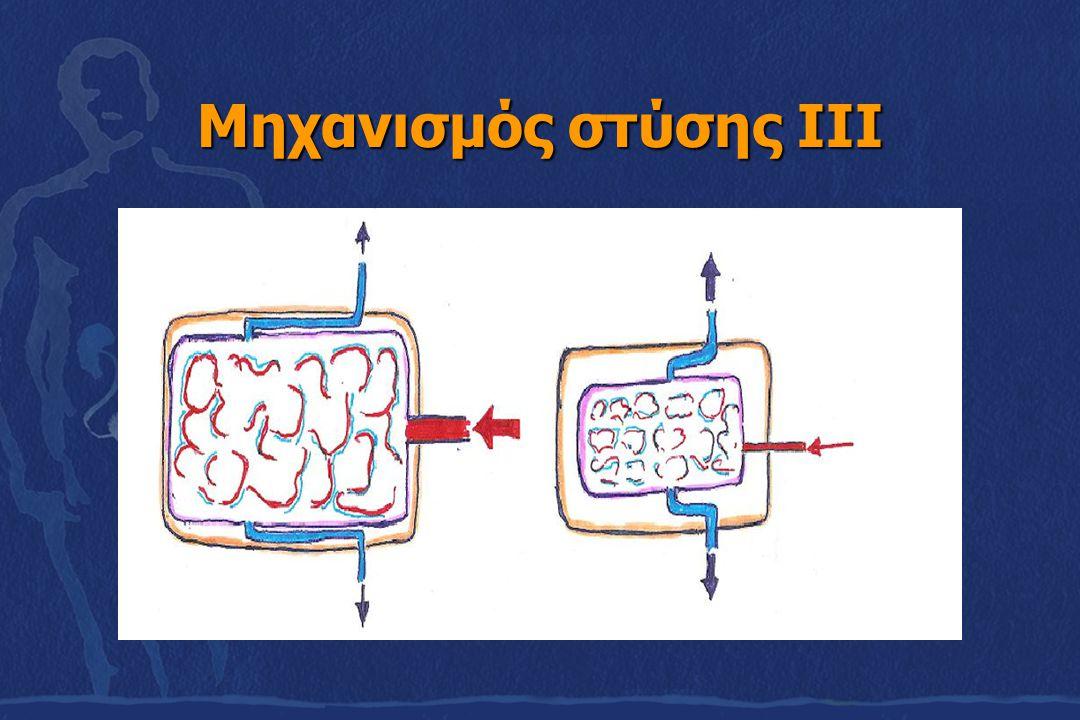 Mηχανισμός στύσης ΙΙΙ