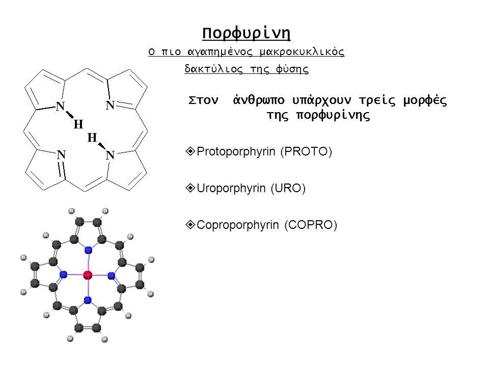 Στον άνθρωπο υπάρχουν τρείς μορφές της πορφυρίνης