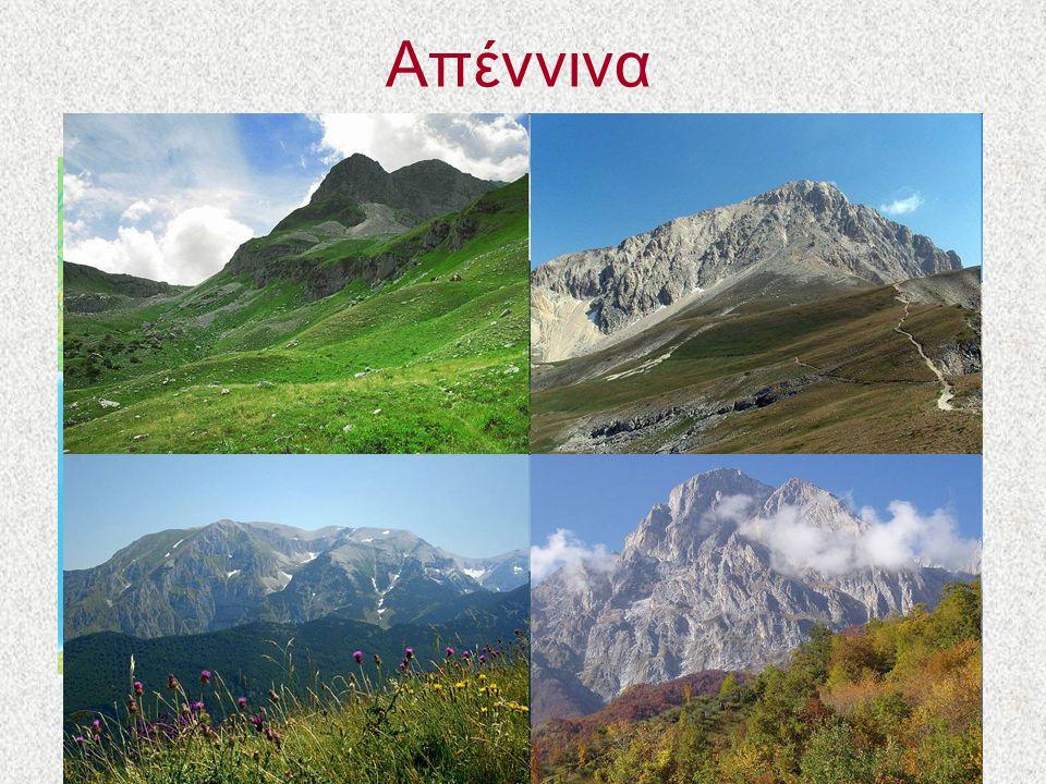 Απέννινα Τα Απέννινα είναι η οροσειρά-ραχοκοκαλιά της Ιταλικής Χερσονήσου. Σχηματίστηκαν την ίδια εποχή με τις Άλπεις.