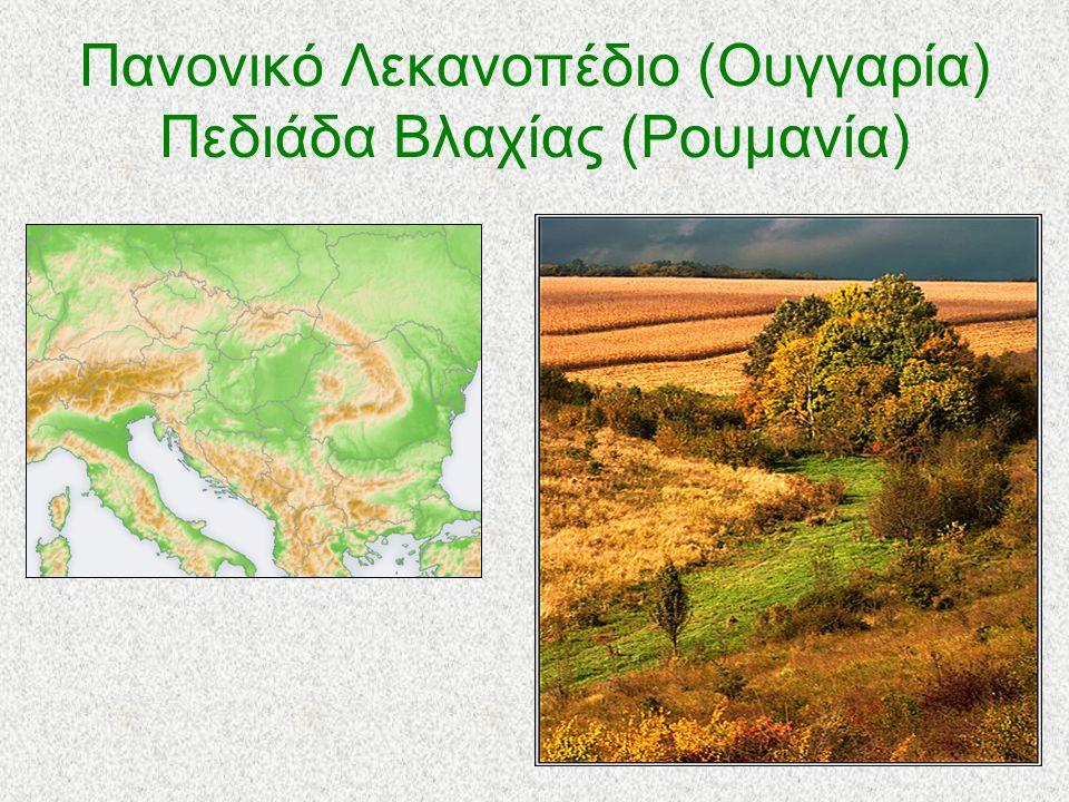Πανονικό Λεκανοπέδιο (Ουγγαρία) Πεδιάδα Βλαχίας (Ρουμανία)