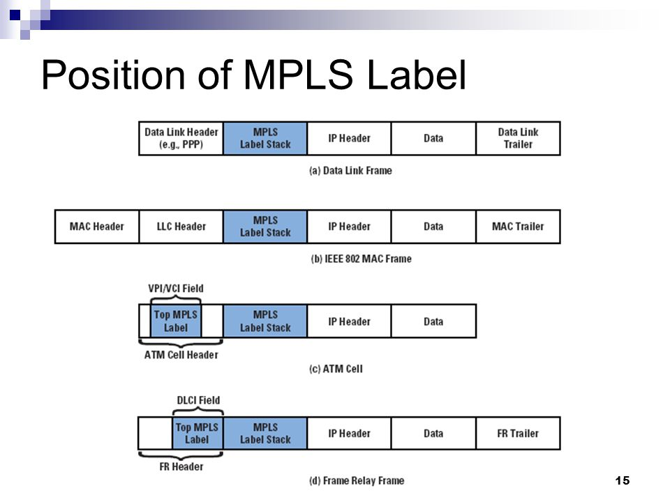 Position of MPLS Label
