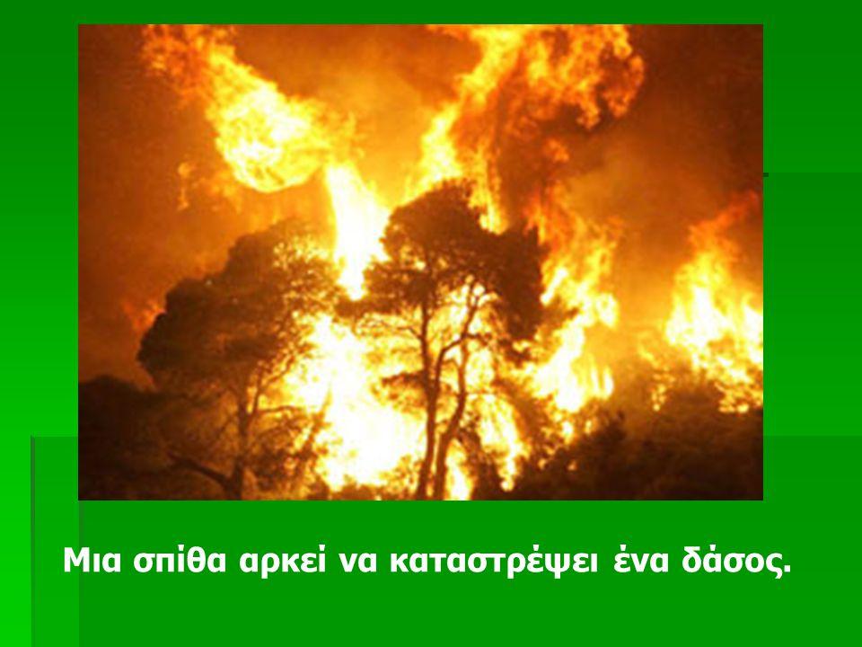 Μια σπίθα αρκεί να καταστρέψει ένα δάσος.