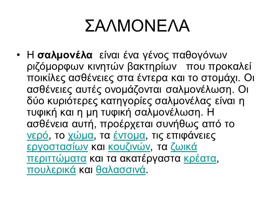 ΣΑΛΜΟΝΕΛΑ