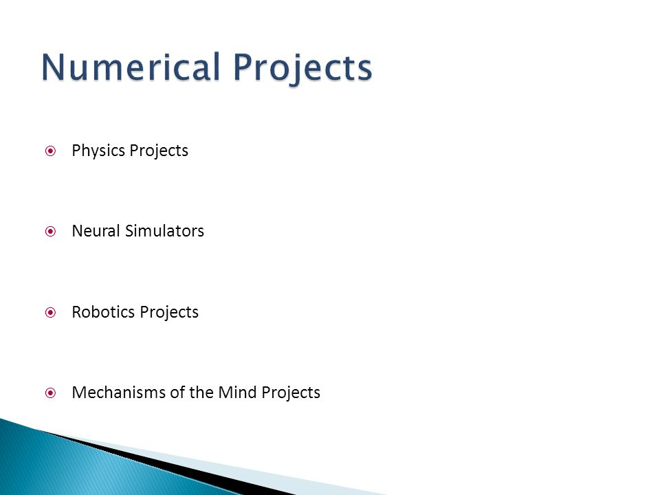 Numerical Projects Physics Projects Neural Simulators