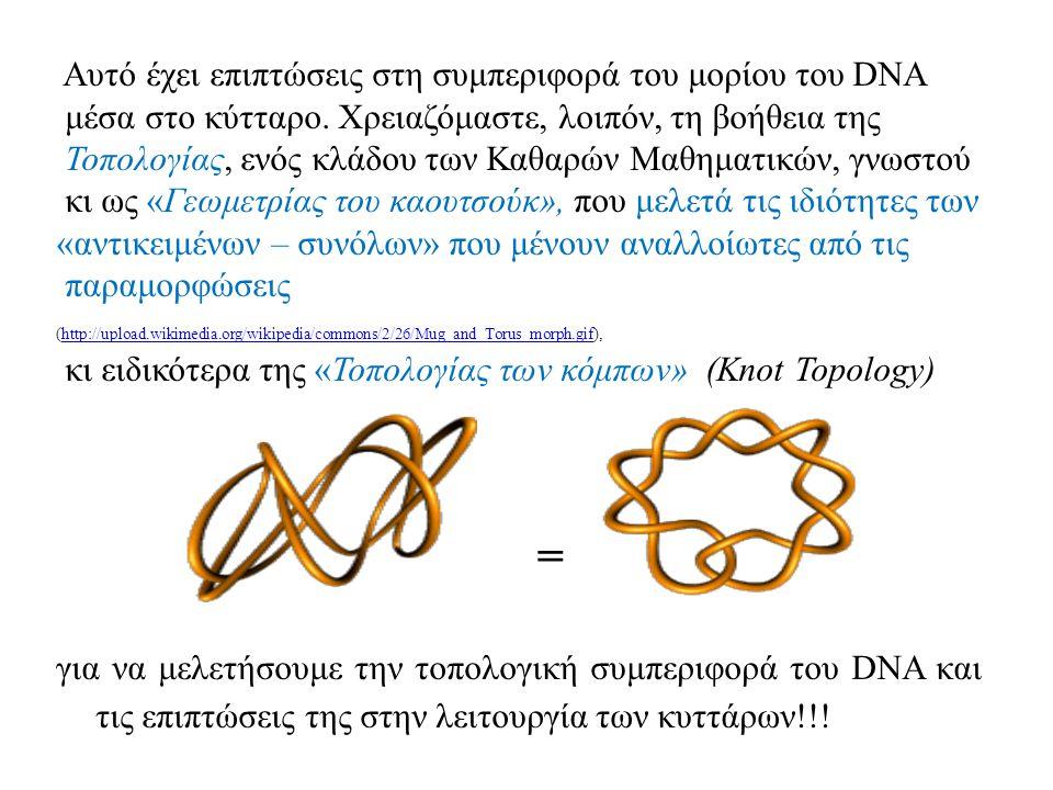 Αυτό έχει επιπτώσεις στη συμπεριφορά του μορίου του DNA