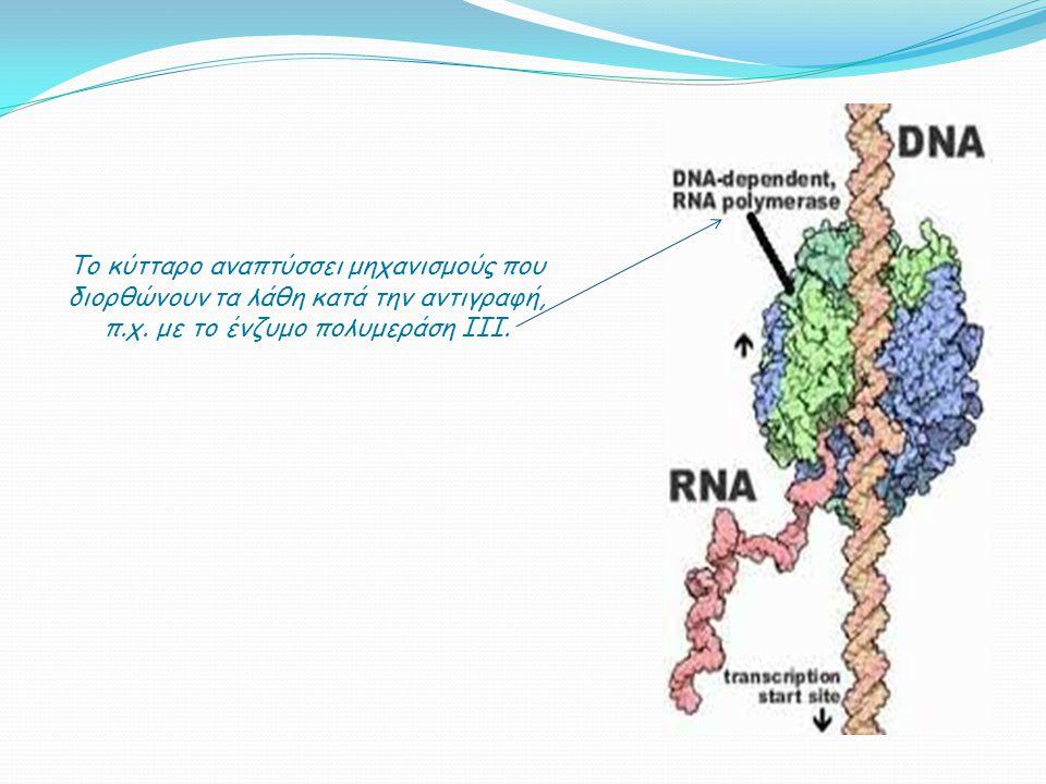 π.χ. με το ένζυμο πολυμεράση III.