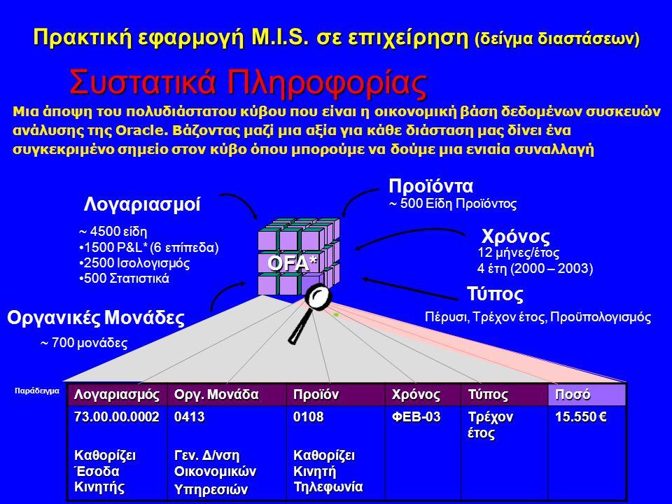Πρακτική εφαρμογή M.I.S. σε επιχείρηση (δείγμα διαστάσεων)