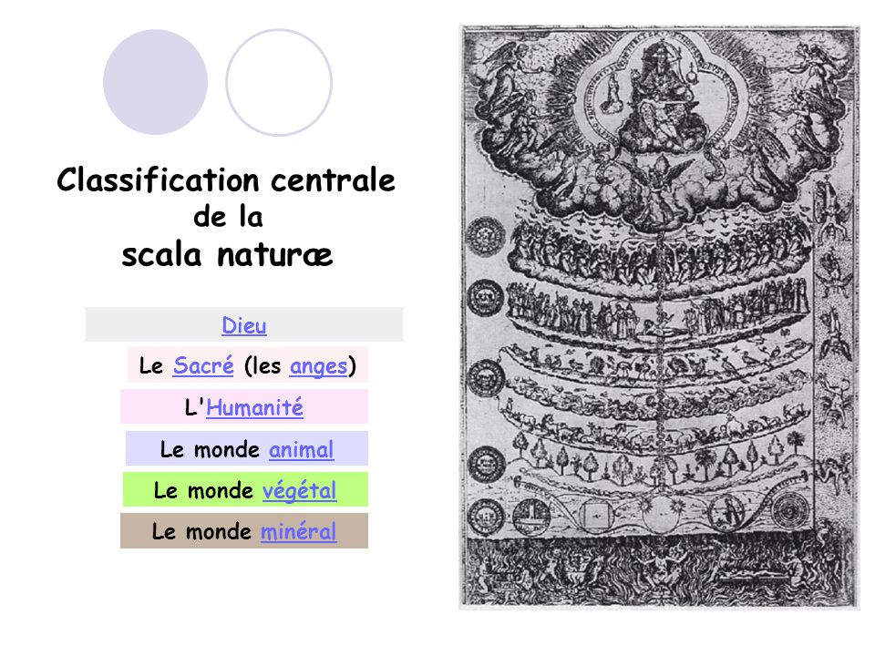 Classification centrale de la