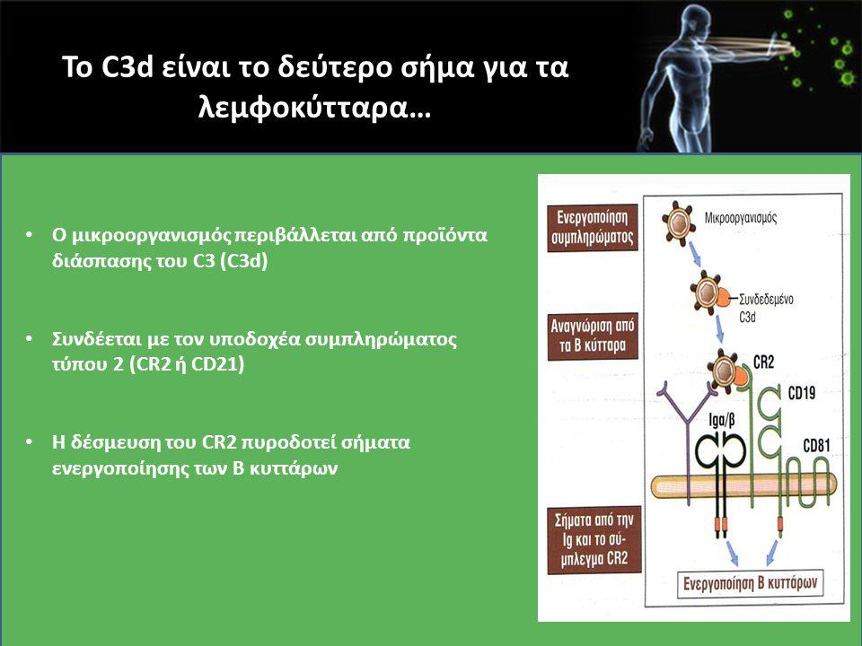 Το C3d είναι το δεύτερο σήμα για τα λεμφοκύτταρα…