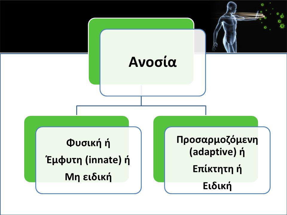Προσαρμοζόμενη (adaptive) ή
