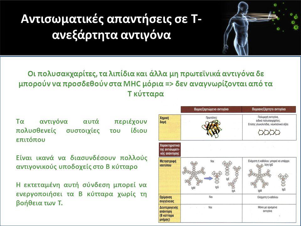 Αντισωματικές απαντήσεις σε Τ-ανεξάρτητα αντιγόνα