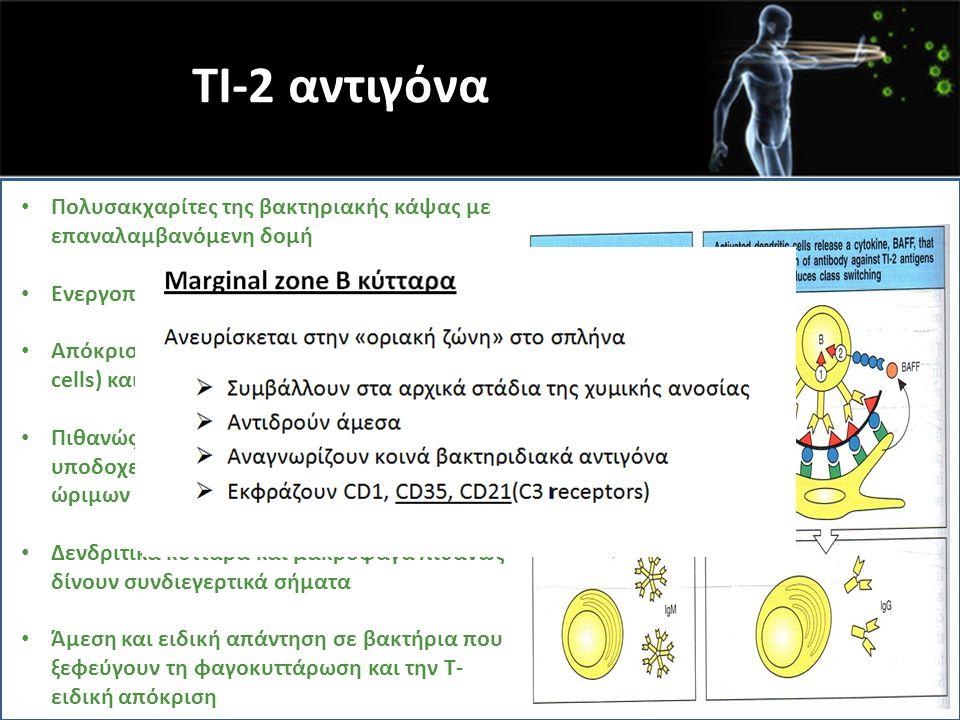 TI-2 αντιγόνα Πολυσακχαρίτες της βακτηριακής κάψας με επαναλαμβανόμενη δομή. Ενεργοποιούν μόνο Β κύτταρα ατόμων > 5έτη.