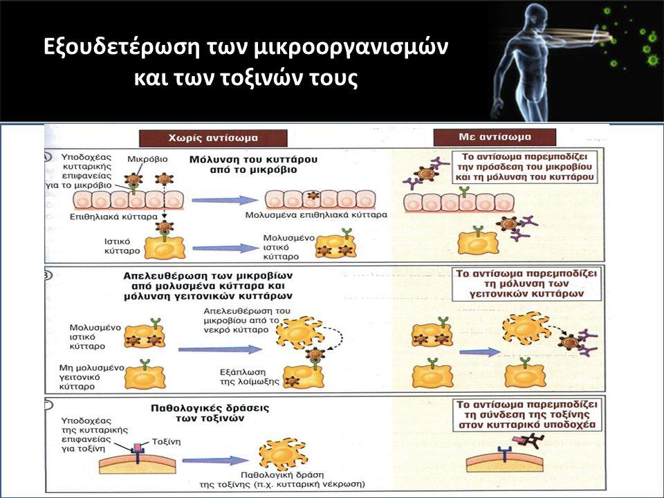 Εξουδετέρωση των μικροοργανισμών και των τοξινών τους