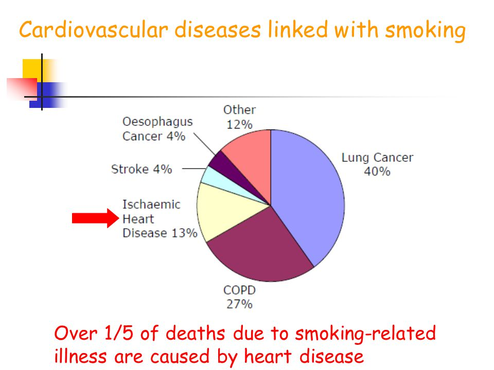 Cardiovascular diseases linked with smoking