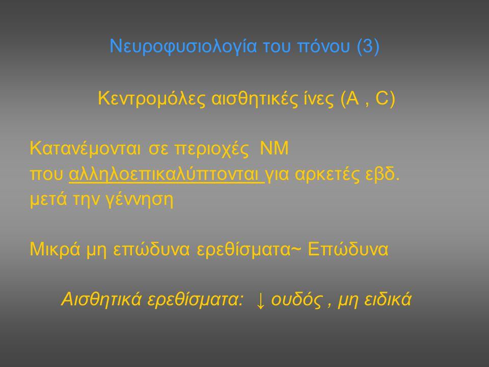 Νευροφυσιολογία του πόνου (3)