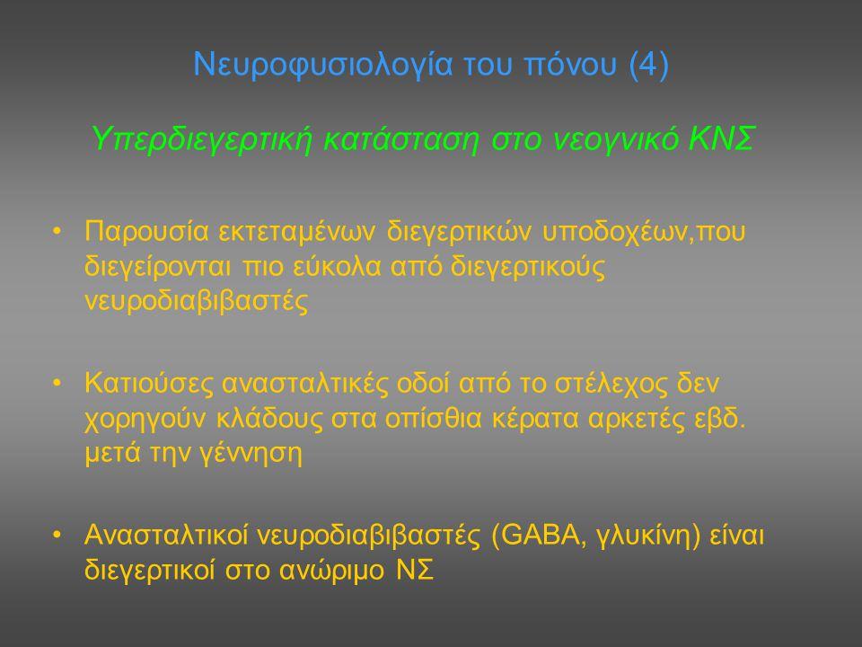 Νευροφυσιολογία του πόνου (4)