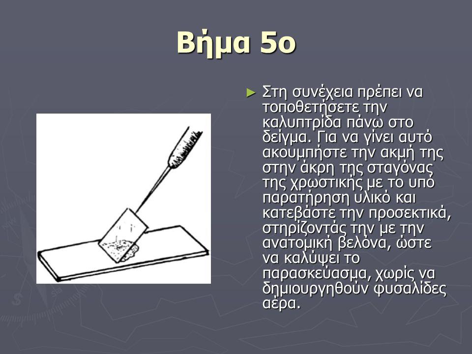 Βήμα 5ο