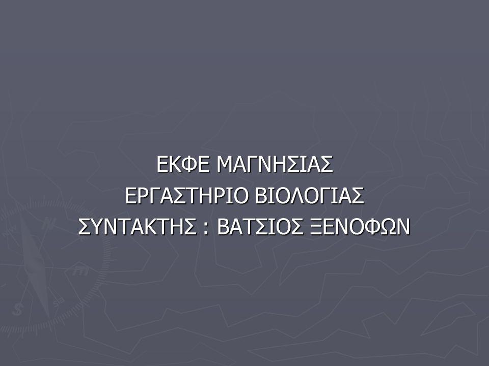 ΣΥΝΤΑΚΤΗΣ : ΒΑΤΣΙΟΣ ΞΕΝΟΦΩΝ