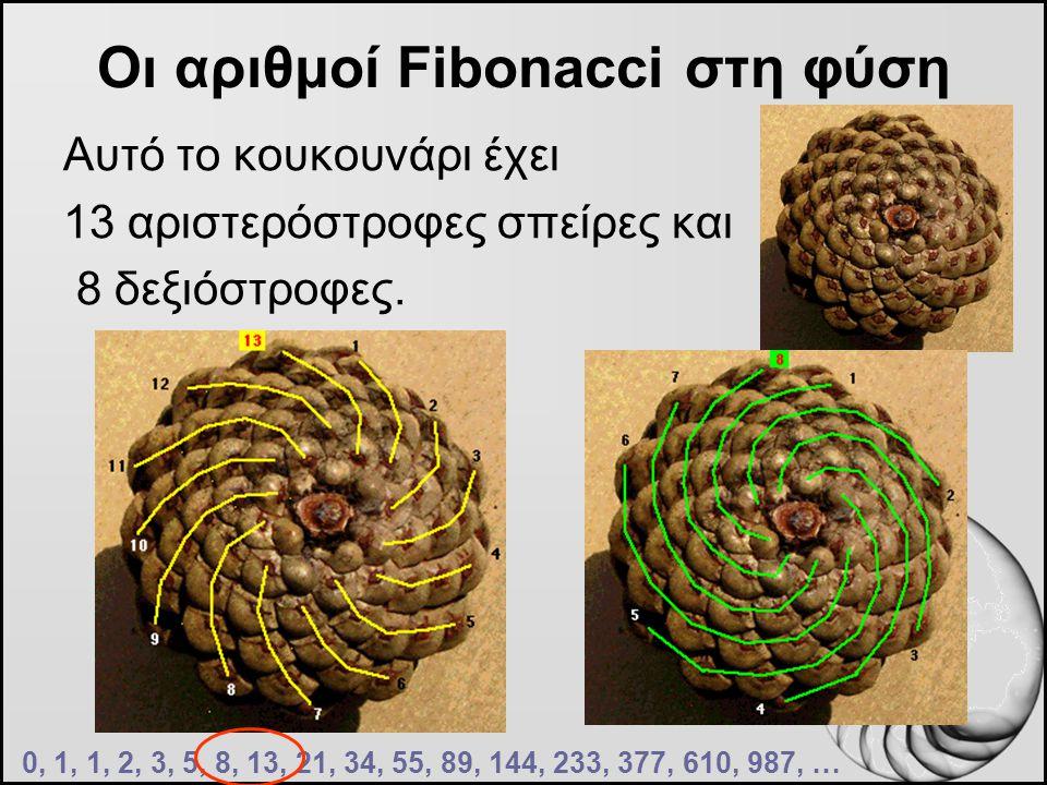 Οι αριθμοί Fibonacci στη φύση