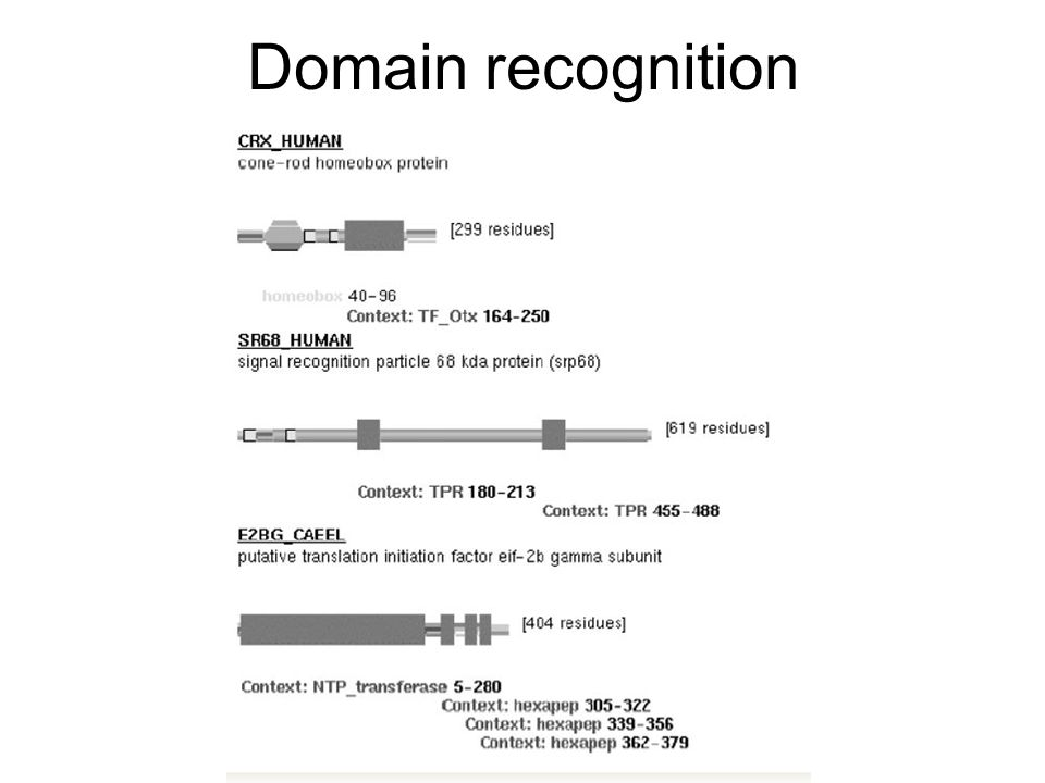 Domain recognition