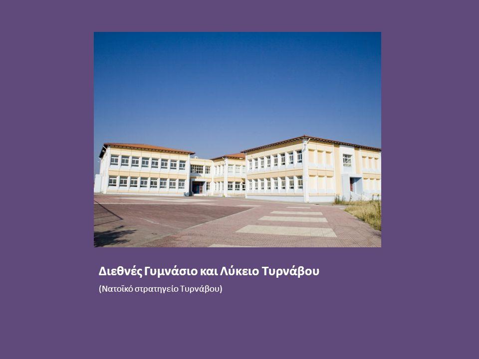 Διεθνές Γυμνάσιο και Λύκειο Τυρνάβου