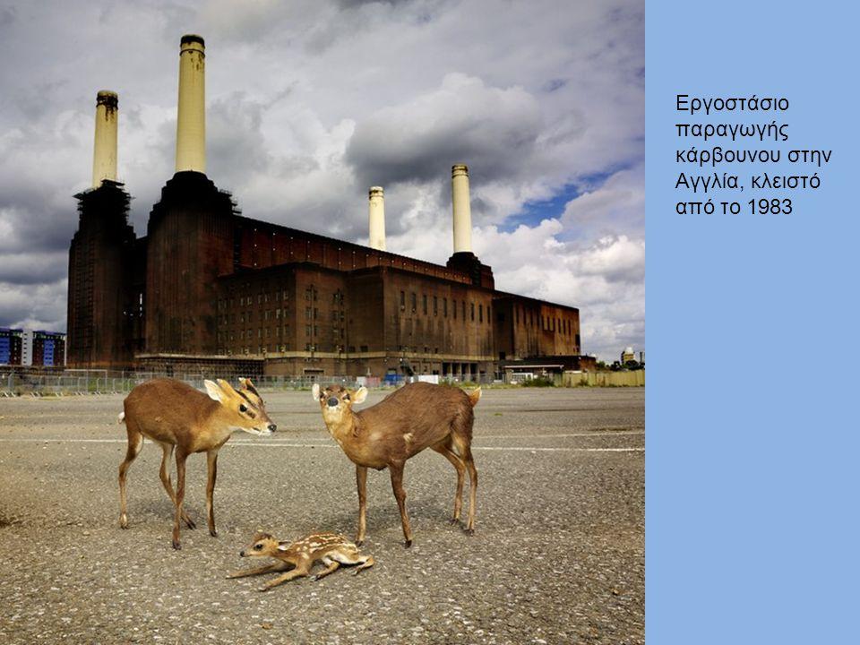 Εργοστάσιο παραγωγής κάρβουνου στην Αγγλία, κλειστό από το 1983