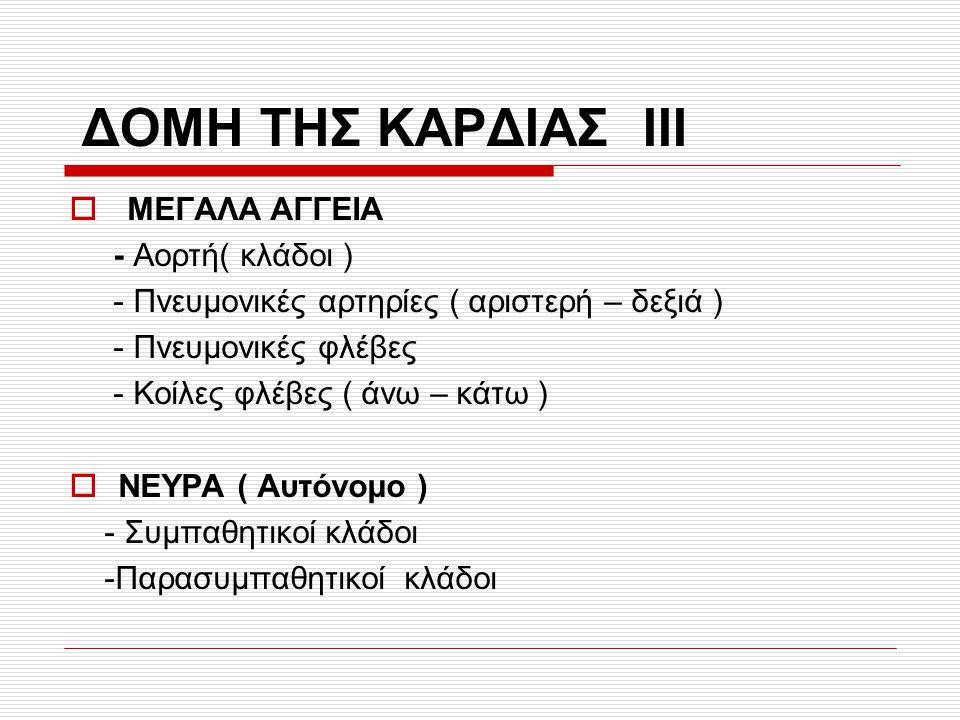 ΔΟΜΗ ΤΗΣ ΚΑΡΔΙΑΣ ΙΙI ΜΕΓΑΛΑ AΓΓΕΙΑ - Αορτή( κλάδοι )