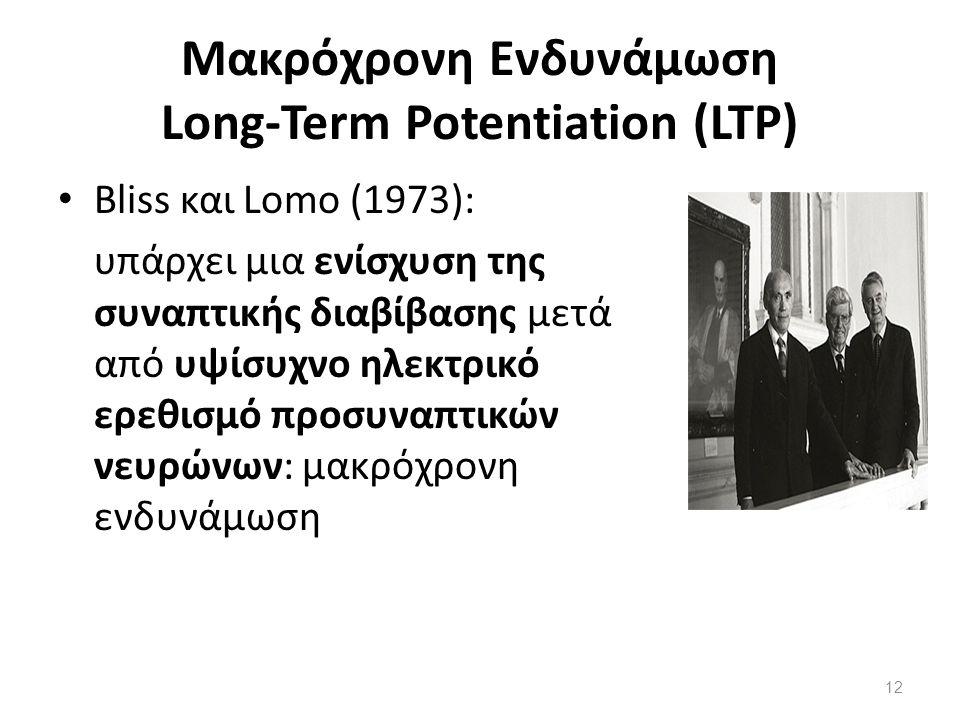 Μακρόχρονη Ενδυνάμωση Long-Term Potentiation (LTP)