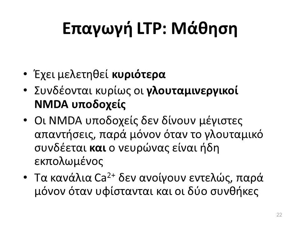 Επαγωγή LTP: Μάθηση Έχει μελετηθεί κυριότερα