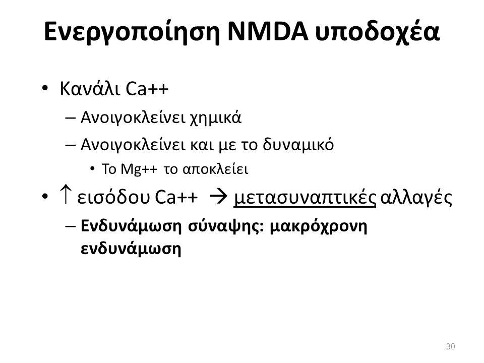 Ενεργοποίηση NMDA υποδοχέα