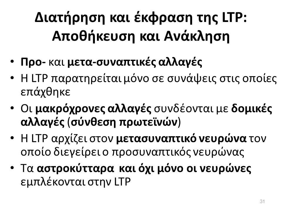 Διατήρηση και έκφραση της LTP: Αποθήκευση και Ανάκληση