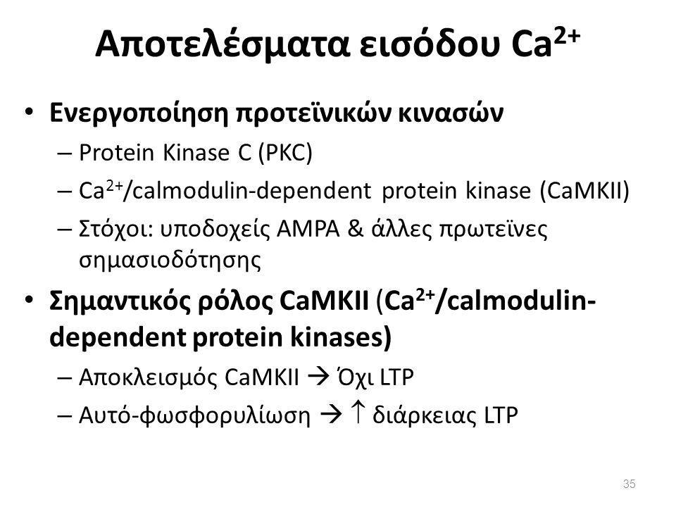Αποτελέσματα εισόδου Ca2+