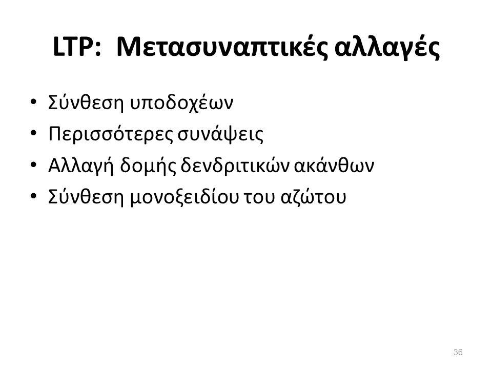 LTP: Μετασυναπτικές αλλαγές