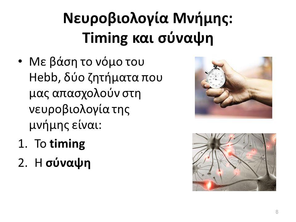 Νευροβιολογία Μνήμης: Timing και σύναψη
