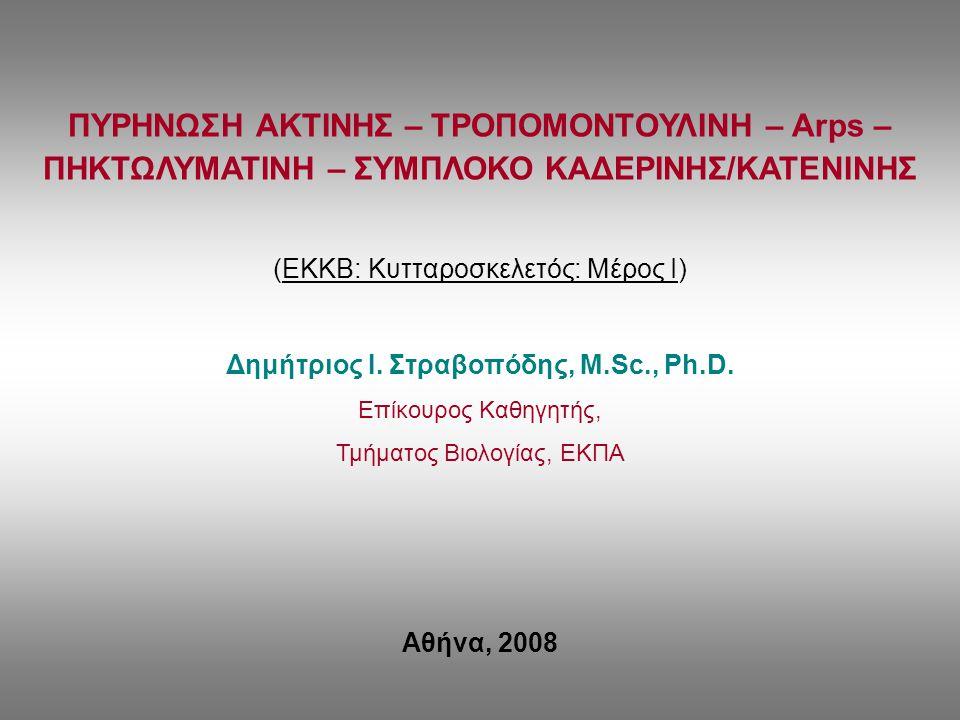 Δημήτριος Ι. Στραβοπόδης, M.Sc., Ph.D.