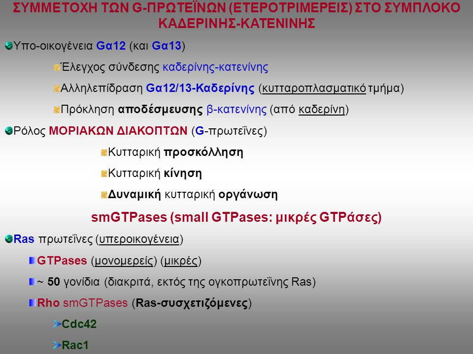 smGTPases (small GTPases: μικρές GTPάσες)