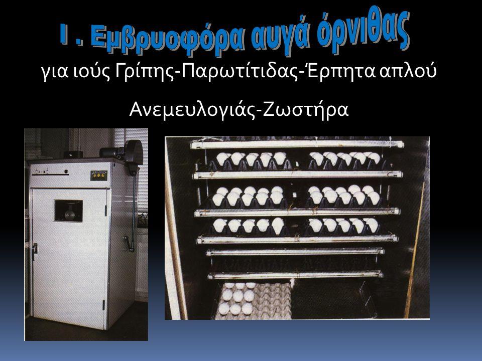 Ι . Εμβρυοφόρα αυγά όρνιθας