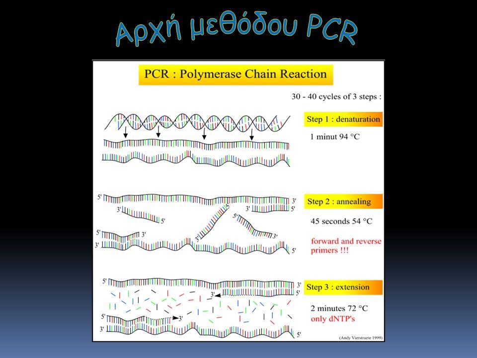 Αρχή της PCR Αρχή μεθόδου PCR