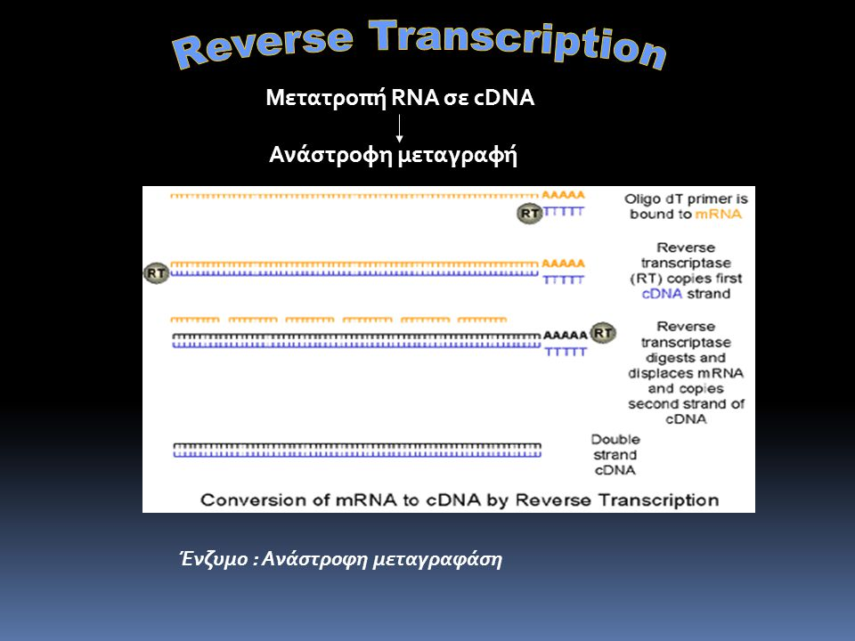 Reverse-transcription