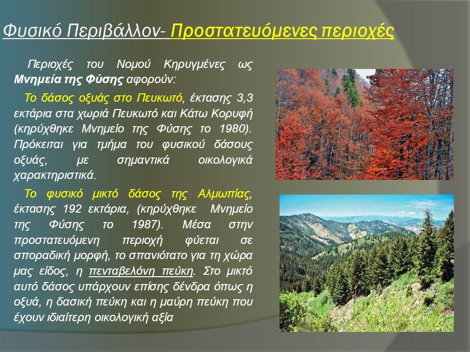 Φυσικό Περιβάλλον- Προστατευόμενες περιοχές