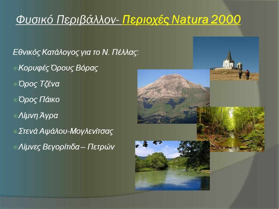 Φυσικό Περιβάλλον- Περιοχές Natura 2000
